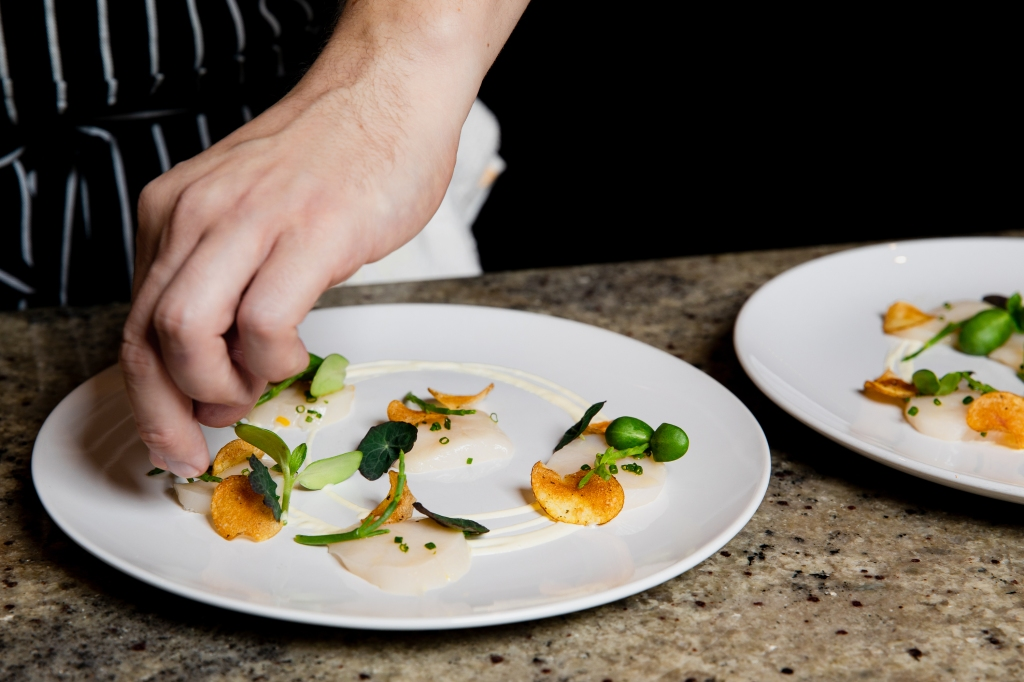 Someone plating a fine dining dish of raw scallops with potato chips.